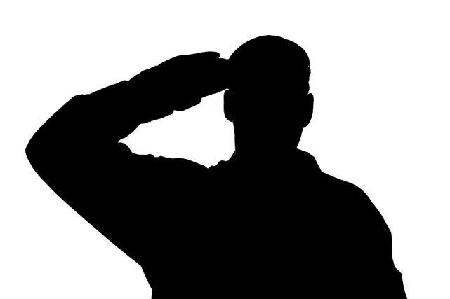 saluting_mod_45154892